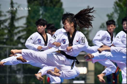 Basic kicks of taekwondo