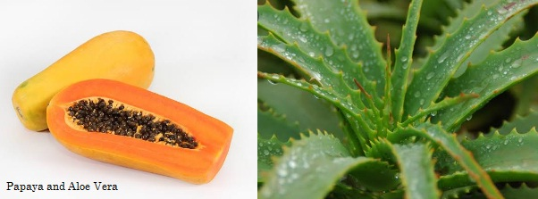 papaya and aloe Vera for hair removal